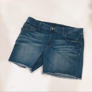 Joe's Denim Mckayla Shorts, Sz 30